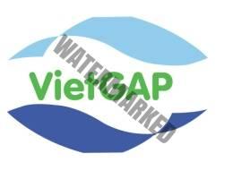 Các tiêu chuẩn về sản xuất nông nghiệp sạch tại Việt Nam 1